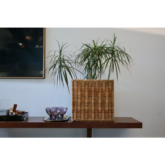 Modernist Wicker Cube Planter / Side Table For Sale In Dallas - Image 6 of 13