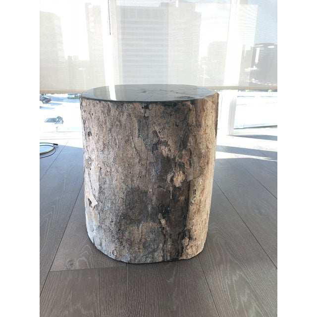 Wood Restoration Hardware Petrified Fossilized Wood Coffee Table Stool For Sale - Image 7 of 7