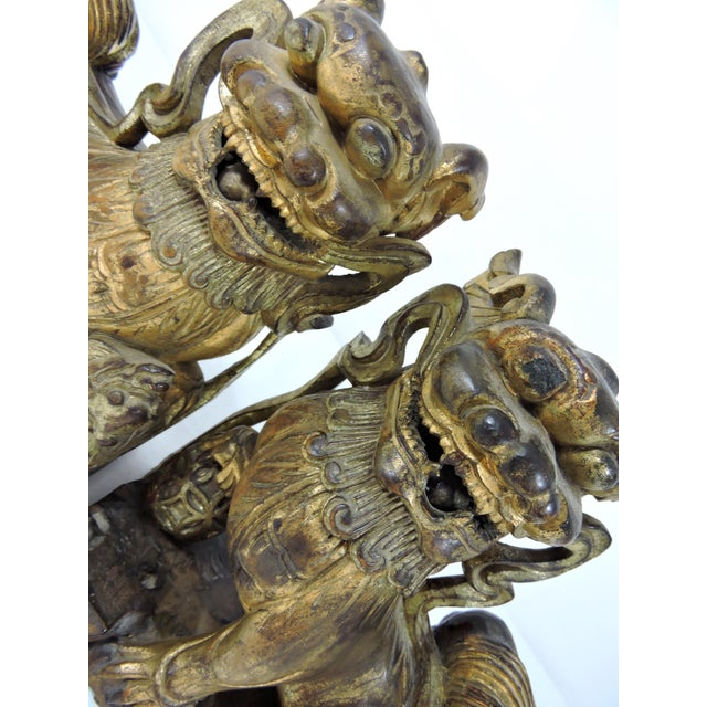 Antique Chinese Carved Gilt Wood Temple Foo Lions- a Pair (Foo Dogs) For Sale - Image 9 of 9