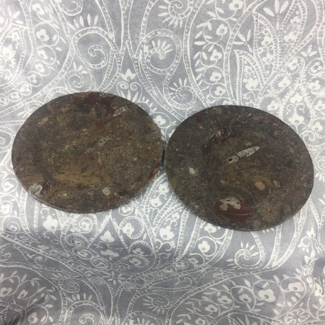 Orthoceras Red Brown Fossil Stone Plates- a Pair For Sale - Image 11 of 12