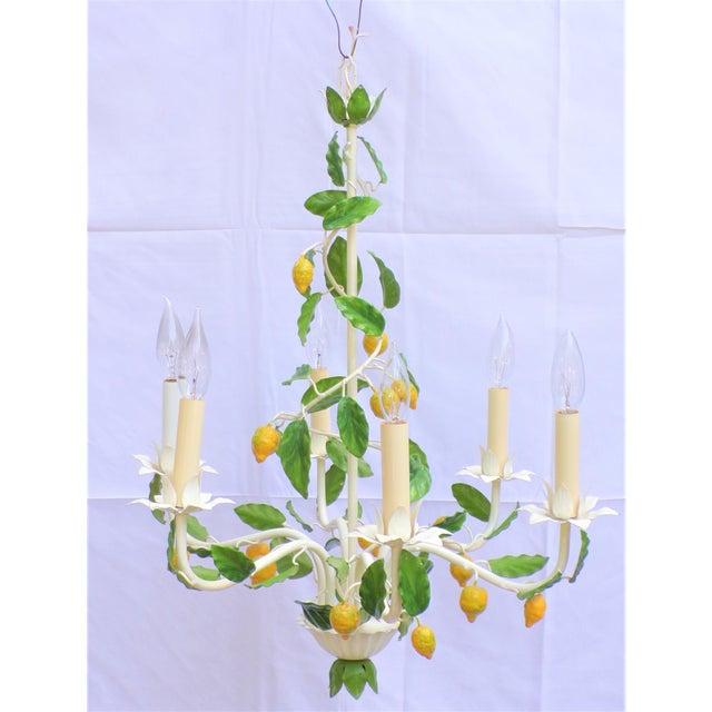 Vintage Italian Lemon Tree Chandelier For Sale - Image 4 of 13