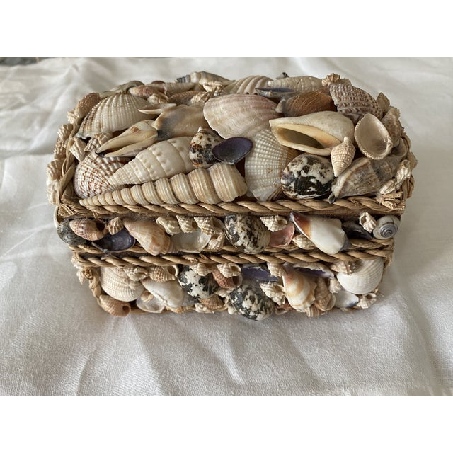 Shell Box For Sale - Image 4 of 4