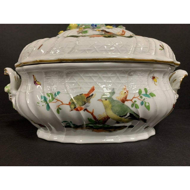 Antique 1750 Meissen Porcelain Tureen with Birds, Insects, Flowers and Boy Finial For Sale In San Diego - Image 6 of 13