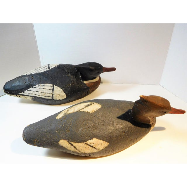 Early 20th Century Vintage Merganser Hand-Carved and Painted Decoys - a Pair For Sale - Image 11 of 13