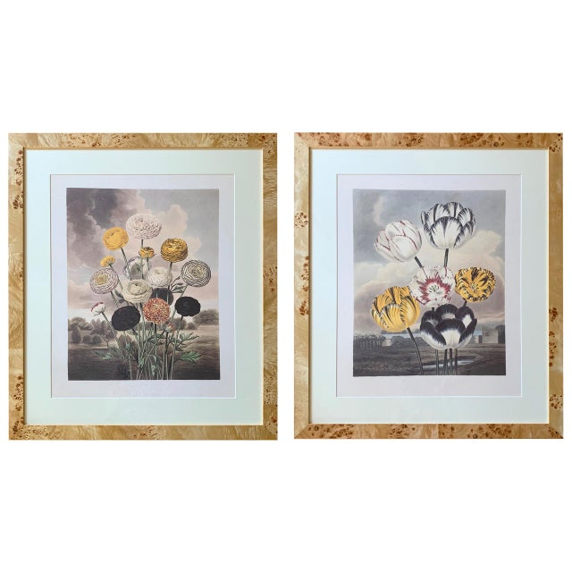 Early 20th Century Antique Framed Botanical Prints - A Pair For Sale - Image 11 of 11