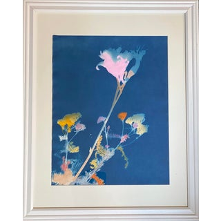 """""""Cornflower"""" Contemporary Abstract Botanical Cyanotype, Framed For Sale"""