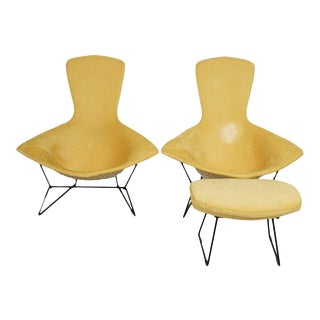 Vintage Knoll Harry Bertoia Bird Chairs and One Ottoman - a Pair For Sale