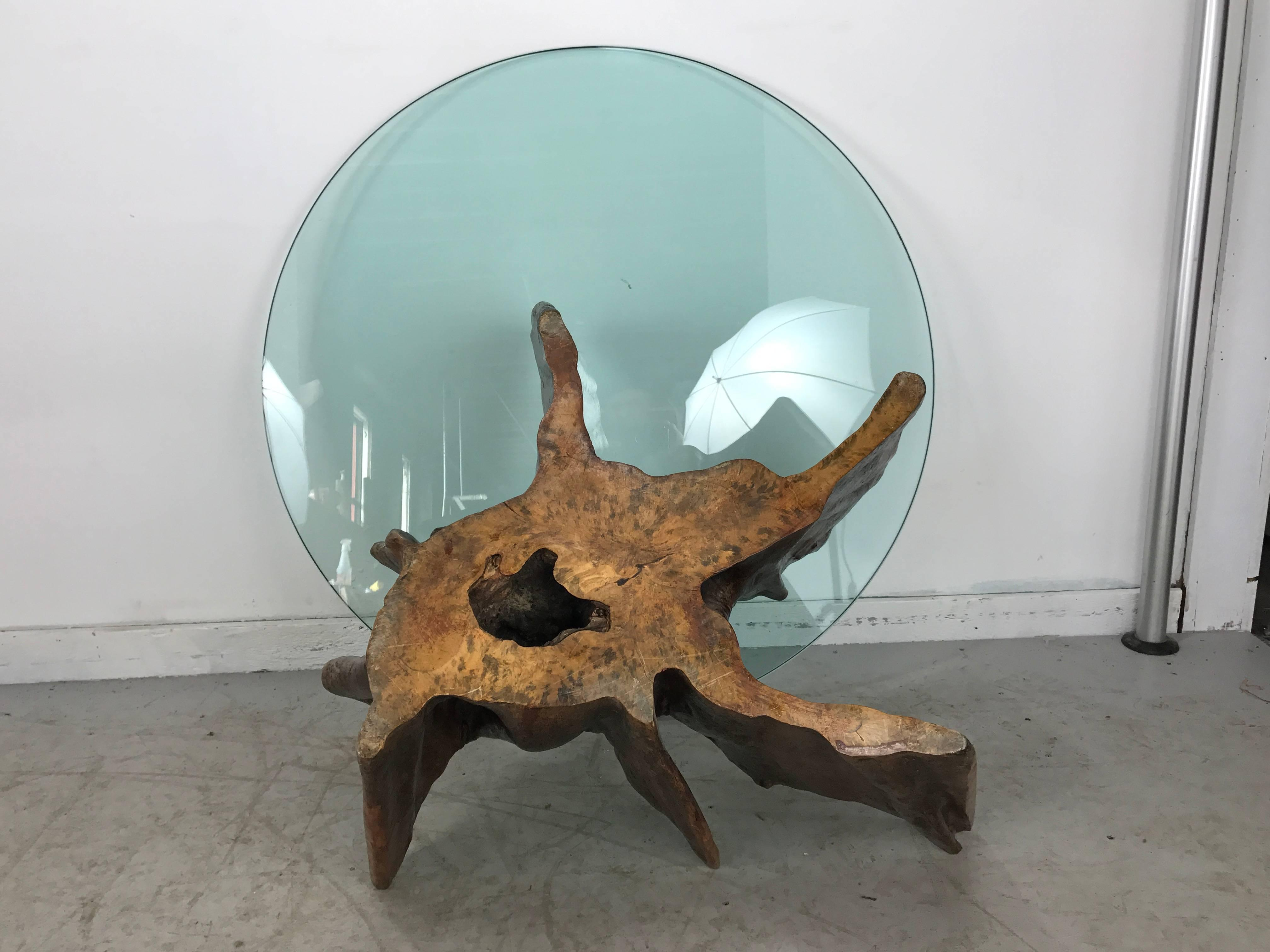 Mid 20th Century Unusual Organic Cyprus Root And Glass Coffee Table For  Sale   Image 5