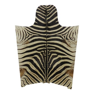 Vintage Zebra Hide Two Panel Screen For Sale