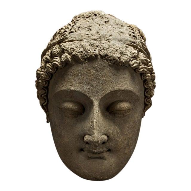 Gandharan Stucco Head of Buddha For Sale
