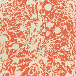 Scalamandre Wildflower Fabric in Guava Sample For Sale