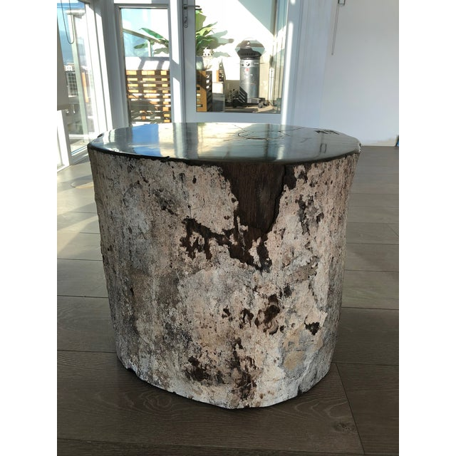 2010s Restoration Hardware Petrified Fossilized Wood Coffee Table Stool For Sale - Image 5 of 7
