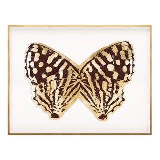 Butterfly Royale, Brown 2 Framed Artwork For Sale