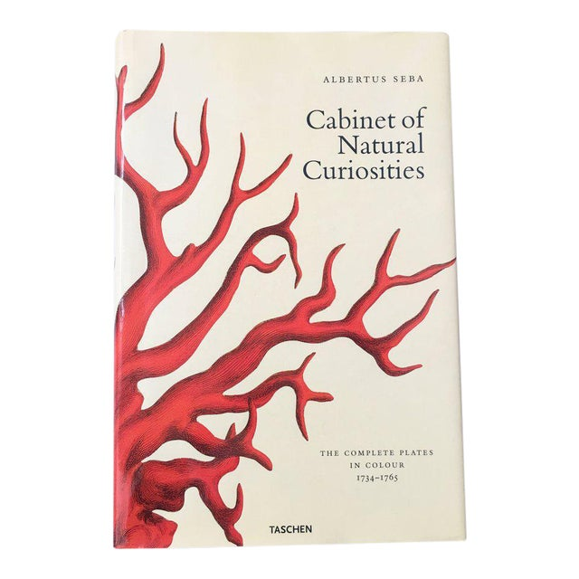 'Cabinet of Natural Curiosities' Oversized Coffee Table Book - Image 1 of 11