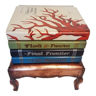 """""""Cabinet of Curiosities"""" Lift Top Book Form Side Table"""