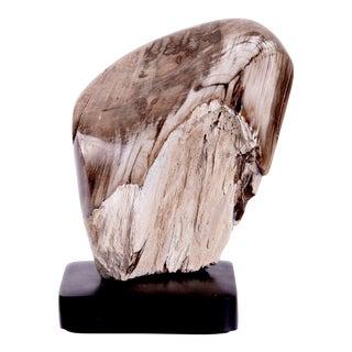 Bulgarian Petrified Wood on Base For Sale