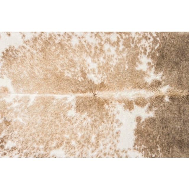 "tricolor cowhide Brazil approximately 78"" h x 90"" w we offer free 2-day shipping in the Continental U.S. on all hides..."