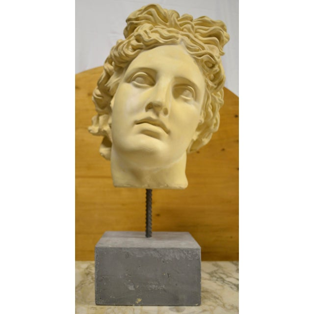 NeoClassical Plaster Bust Sculpture - Greek God's Head on Stone Base For Sale - Image 10 of 10