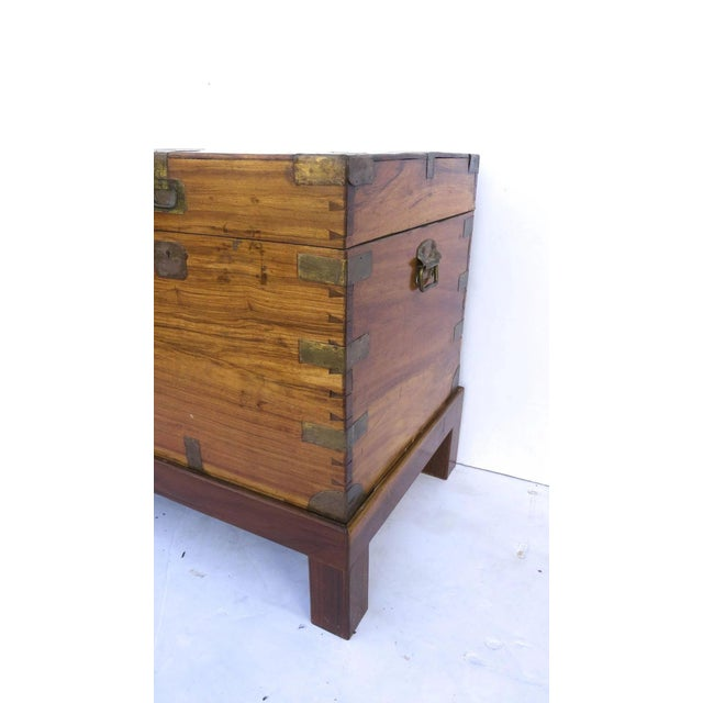 Early 19th Century Early 19th Century Camphor Wood Campaign Chest on Stand For Sale - Image 5 of 9