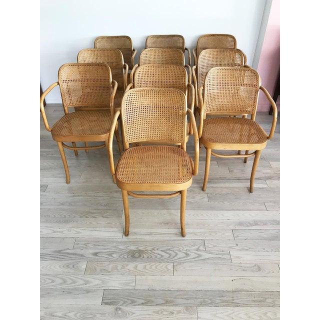 "Mid-Century Josef Hoffmann ""Prague"" 811 Cane & Bentwood Armchairs - Set of 10 - Image 5 of 11"