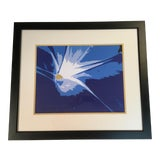 Image of Limited Edition Abstract Lithograph For Sale