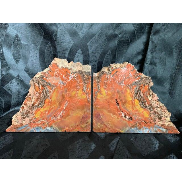 "Gem Grade Petrified Wood Bookends Araucaria ""Arizona Rainbow Wood"" - a Pair For Sale - Image 12 of 12"