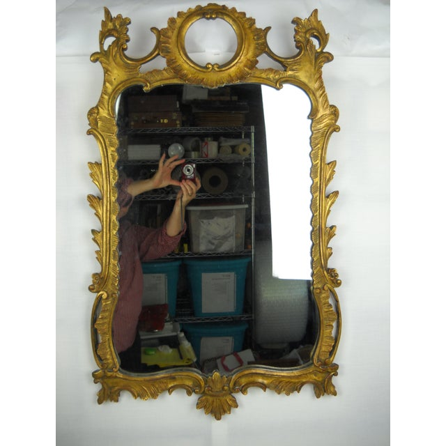 Rococo Style Gilt Palladio Mirror Chairish