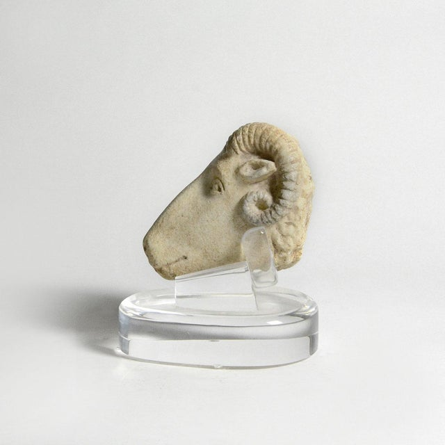 Please update measurements. This well-modeled head of a ram captures the essence of the animal with the articulated ridge...