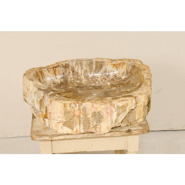 Contemporary Vintage Mid Century Petrified Wood Sink For Sale - Image 3 of 9
