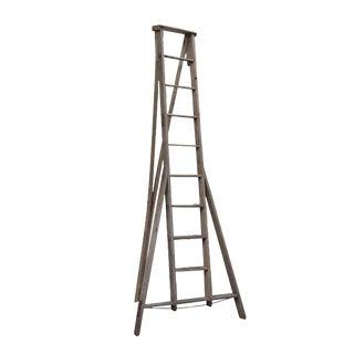 Large Wooden Apple Ladder c. 1930-1940s