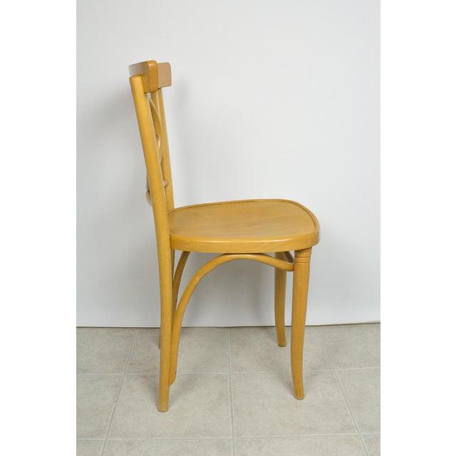 Adirondack Radomsko Thonet Bentwood Cafe Chairs - Set of 4 For Sale - Image 3 of 10