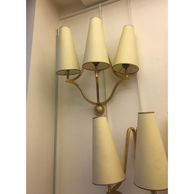 "Jean Royère Jean Royere Gold Leaf Wrought Iron Pair of Sconces Model ""Jacques"" For Sale - Image 4 of 9"