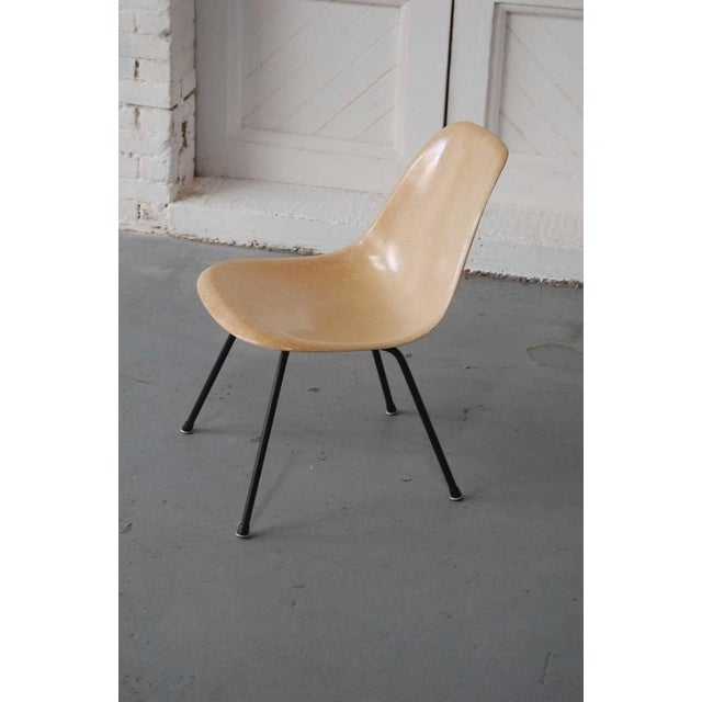 Mid 20th Century Early Eames Msx Chair For Sale - Image 5 of 7