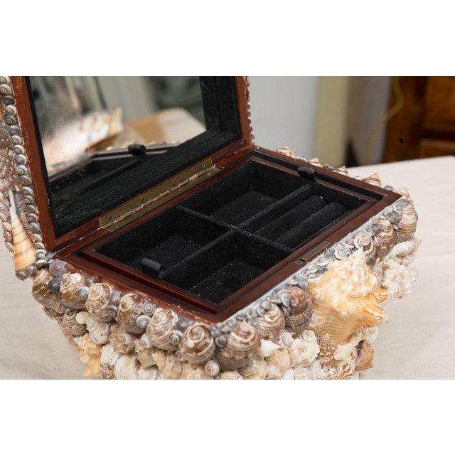 Purple Shell Encrusted Lidded Box For Sale - Image 8 of 10