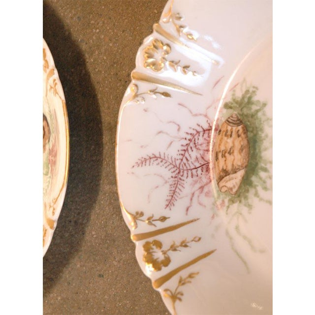 Ceramic Shell Decorated Dishes - Set of 6 For Sale - Image 7 of 9