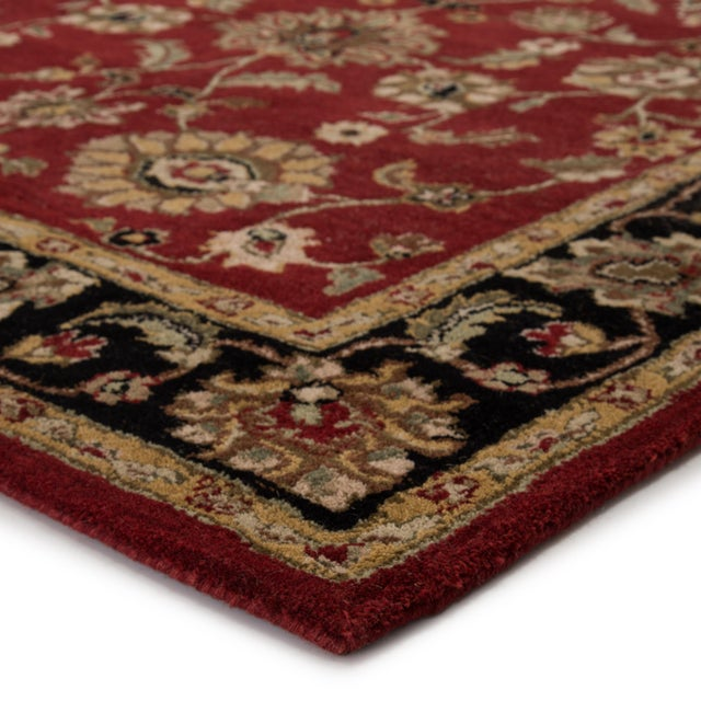 This hand-tufted area rug offers vintage elegance to traditional homes. Scrolling vines and floral medallions gracefully...