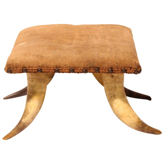 Early 20th C. Antique Horn and Needlework Foot Stool For Sale