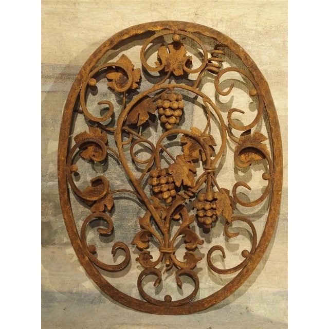 Decorative Oval Iron Wall Hanging With Scrolling Grape Vines For Sale - Image 4 of 11