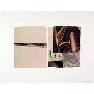 1971 Robert Rauschenberg 'Untitled (Plants)' Pop Art Brown Usa Offset Lithograph For Sale