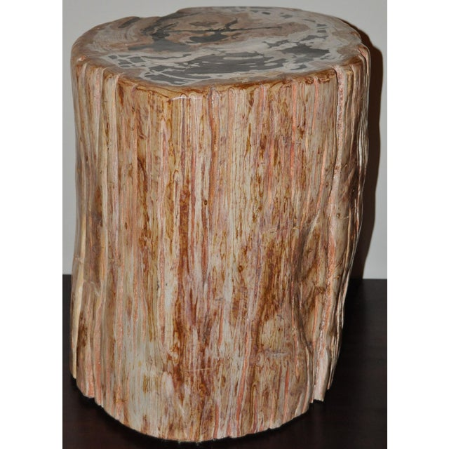 Stone Ancient Petrified Wood Side Table For Sale - Image 7 of 7