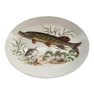 1970s Vintage Johnson Brothers Ironstone Fish/ Stugeon Platter For Sale