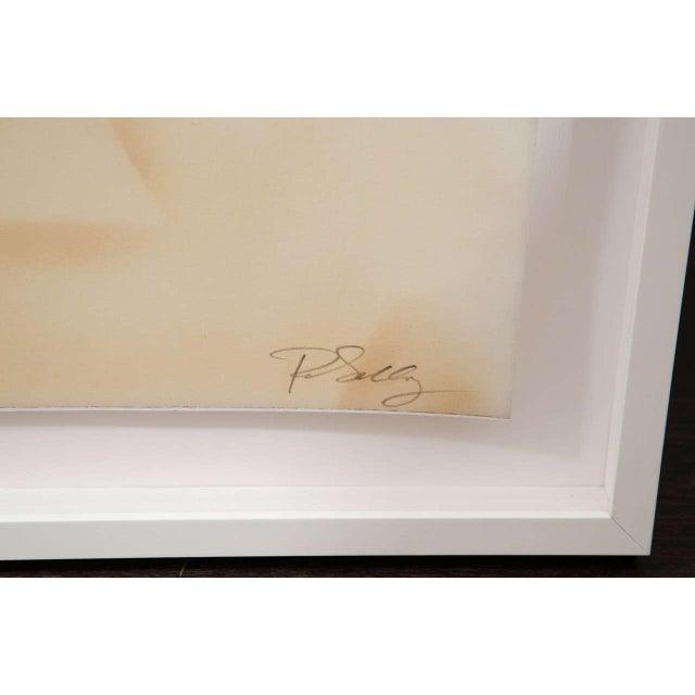 2010s Paul Solberg Original Photograph For Sale - Image 5 of 7