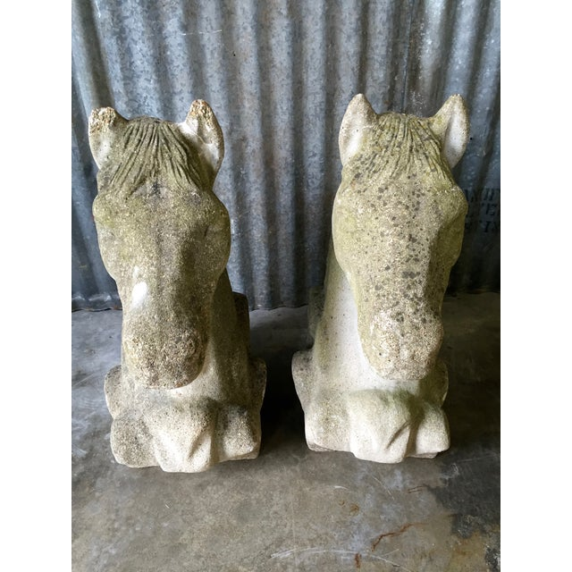Antique Concrete Horse Head For Sale - Image 11 of 11