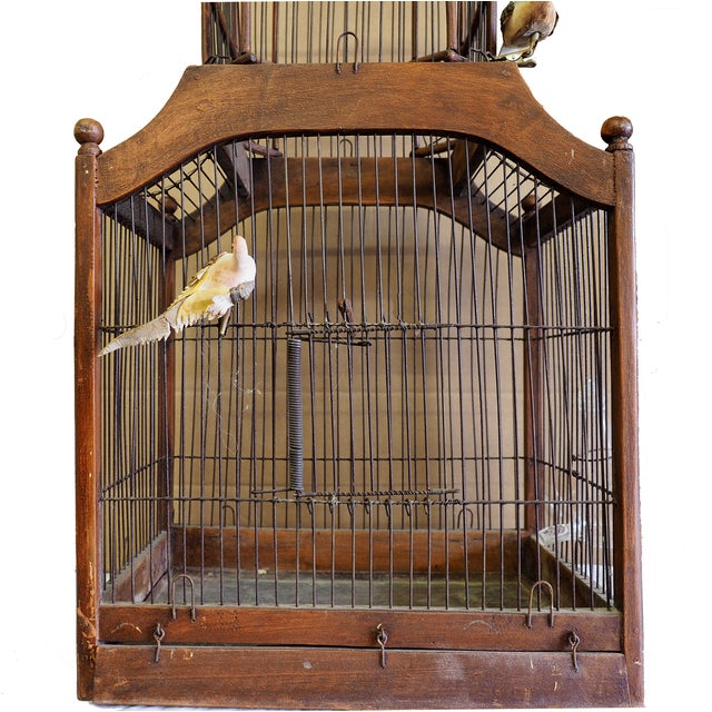 Antique 19th Century Victorian Cupola Bird Cage - Image 2 of 7