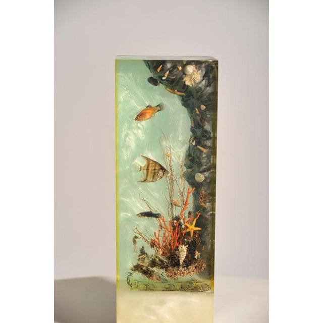 """Italian Lucite Lighted """"Under-the-Sea"""" Aquarium Sculpture - Image 6 of 7"""