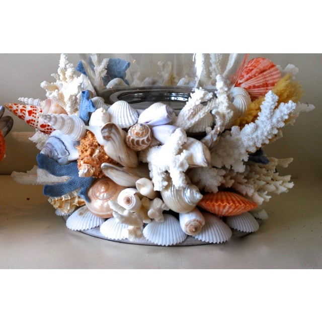 Pair of Large Seashell and Coral Hurricane Lanterns with Glass Top and Chrome inside. Base is wood. Luscious special...