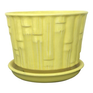 Mid-Century McCoy Yellow Bamboo Catch Planter For Sale