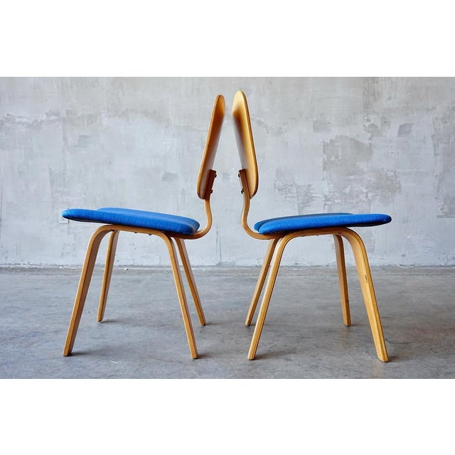 Mid-Century Modern Set of 6 Thaden Jordan Dining Chairs For Sale - Image 3 of 8