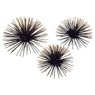 Gold Tipped Sea Urchin Wall Decor - Set of 3