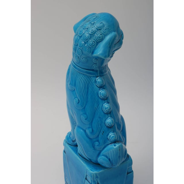 Stone 1920s Chinese, Glazed Peking Blue Foo Dogs - a Pair For Sale - Image 7 of 11